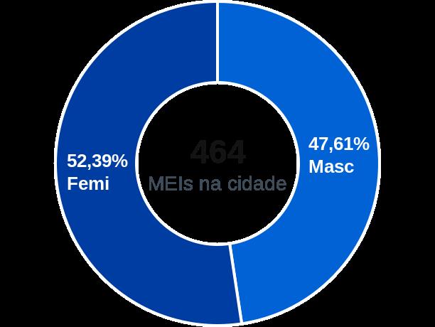 Gênero de MEIs na cidade de São Vicente de Minas