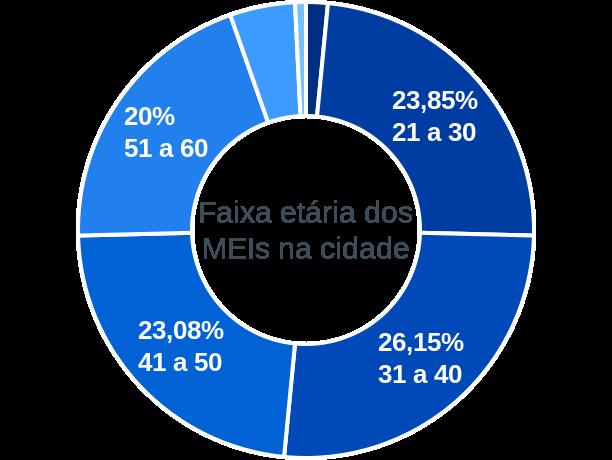 Faixa etária de MEIs na cidade de Senador Modestino Gonçalves