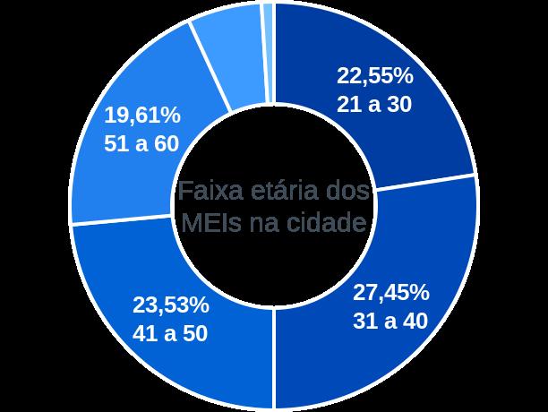Faixa etária de MEIs na cidade de Senhora do Porto