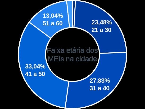 Faixa etária de MEIs na cidade de Serra Azul de Minas