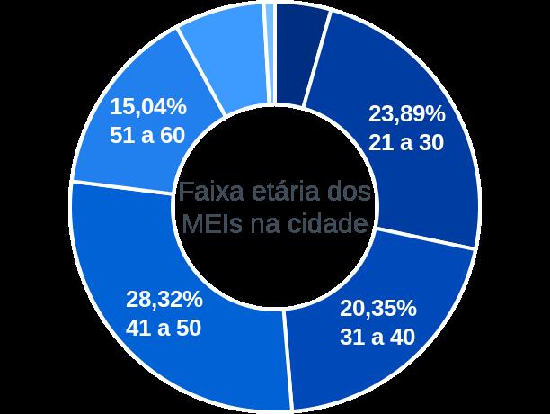 Faixa etária de MEIs na cidade de Serra da Saudade