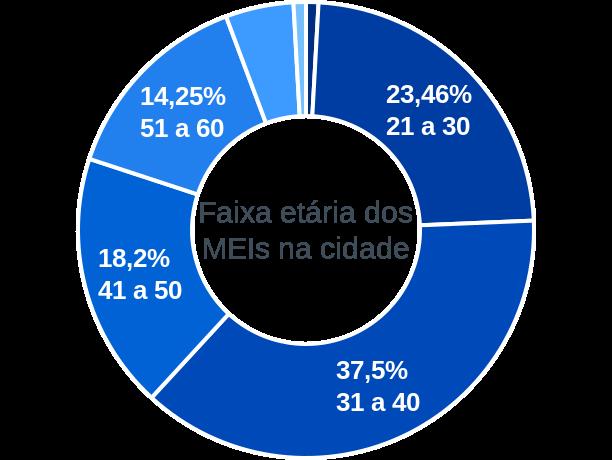 Faixa etária de MEIs na cidade de Serra do Salitre