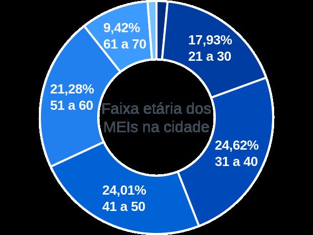 Faixa etária de MEIs na cidade de Serra dos Aimorés