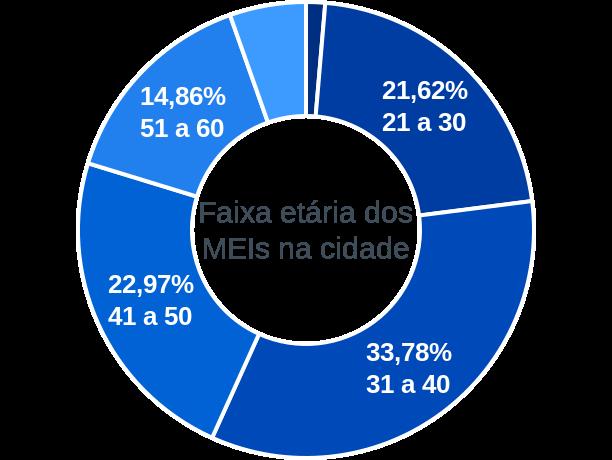 Faixa etária de MEIs na cidade de Serranópolis de Minas