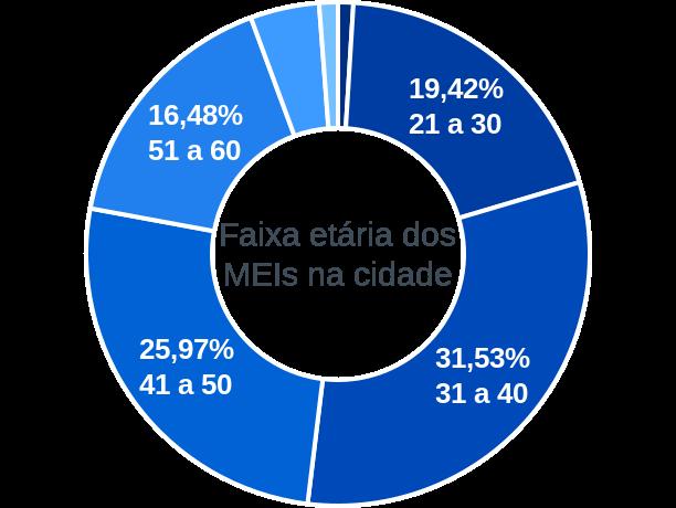 Faixa etária de MEIs na cidade de Visconde do Rio Branco