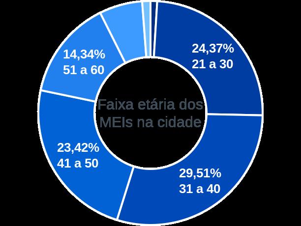 Faixa etária de MEIs na cidade de Água Clara