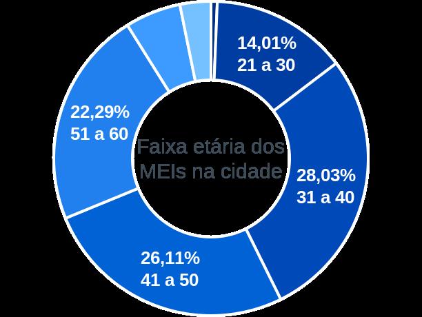 Faixa etária de MEIs na cidade de Figueirão