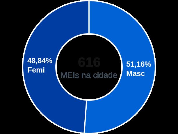 Gênero de MEIs na cidade de Nioaque