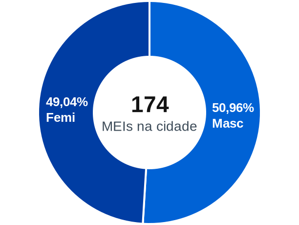 Gênero de MEIs na cidade de Novo Horizonte do Sul
