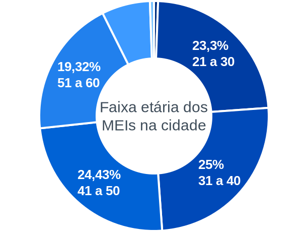 Faixa etária de MEIs na cidade de Novo Horizonte do Sul