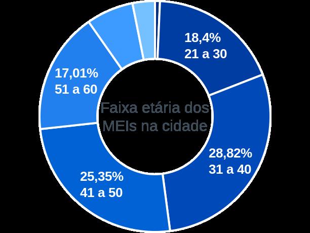 Faixa etária de MEIs na cidade de Santa Rita do Pardo
