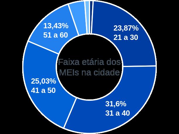 Faixa etária de MEIs na cidade de Água Boa