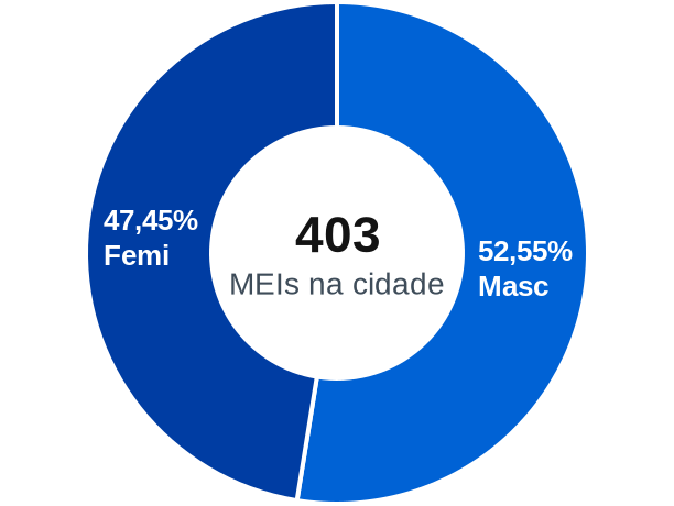 Gênero de MEIs na cidade de Ribeirão Cascalheira