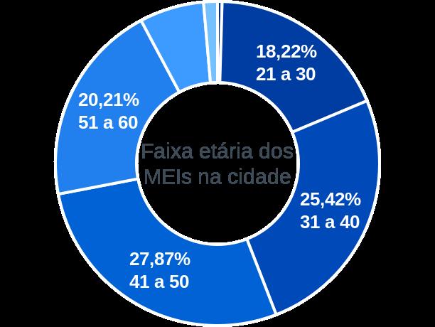 Faixa etária de MEIs na cidade de São Félix do Araguaia