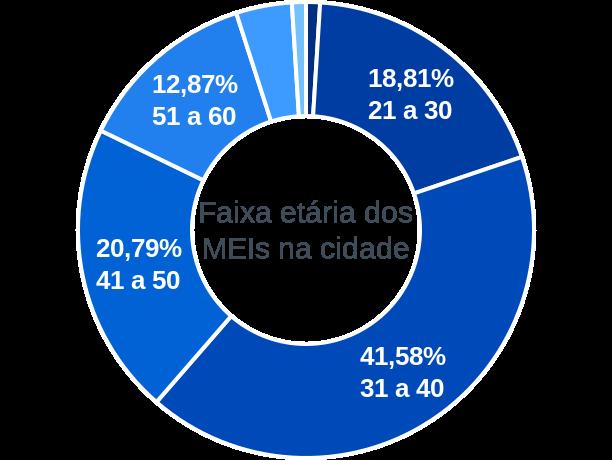 Faixa etária de MEIs na cidade de Vale de São Domingos