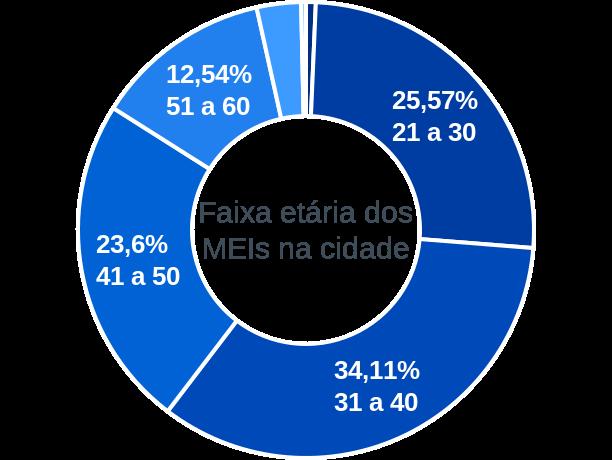 Faixa etária de MEIs na cidade de Bragança