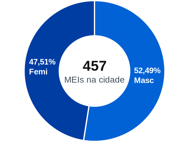 Gênero de MEIs na cidade de Curionópolis