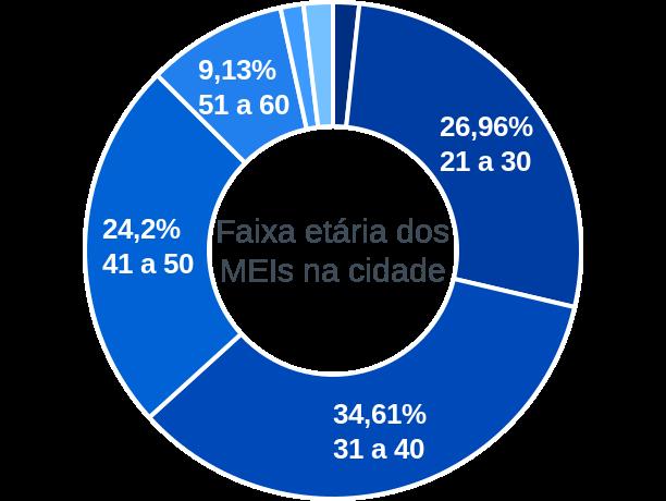 Faixa etária de MEIs na cidade de Goianésia do Pará