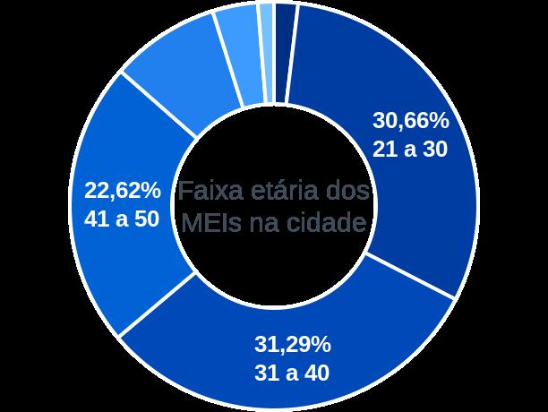 Faixa etária de MEIs na cidade de Ipixuna do Pará
