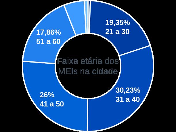 Faixa etária de MEIs na cidade de Óbidos