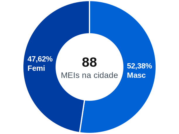 Gênero de MEIs na cidade de Palestina do Pará