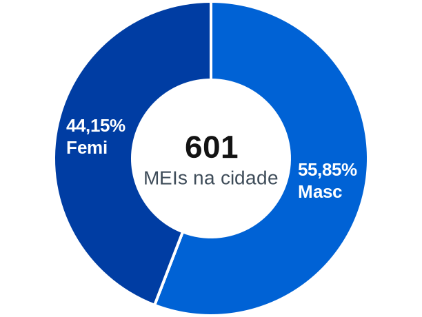 Gênero de MEIs na cidade de Santa Maria do Pará