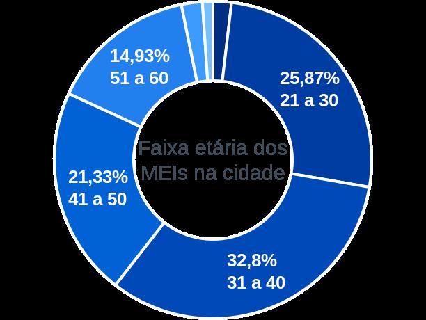 Faixa etária de MEIs na cidade de São Domingos do Araguaia