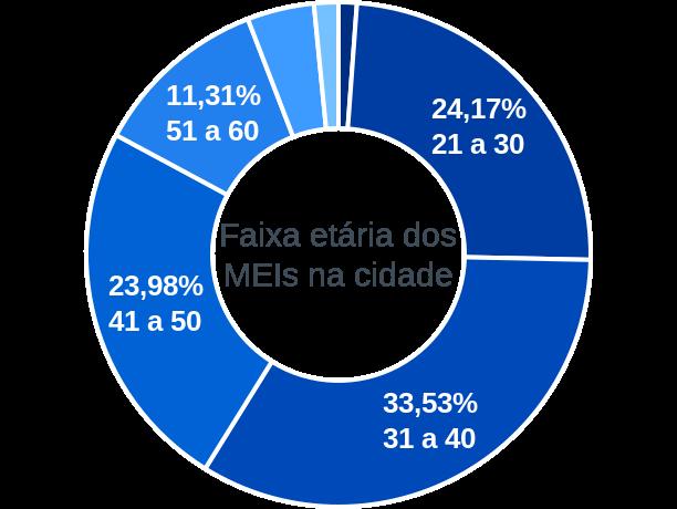 Faixa etária de MEIs na cidade de São Geraldo do Araguaia