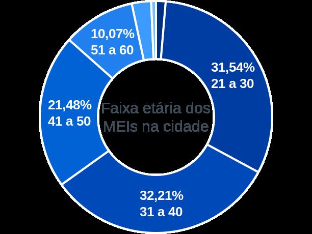 Faixa etária de MEIs na cidade de São João do Araguaia
