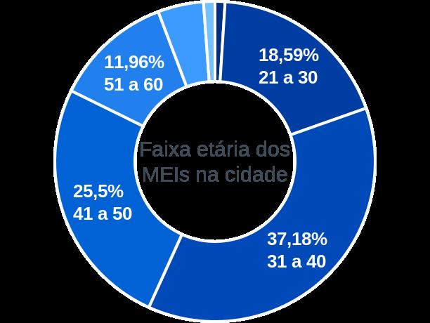 Faixa etária de MEIs na cidade de Alagoa Nova