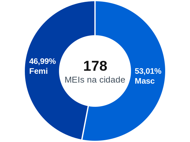 Gênero de MEIs na cidade de Pilões