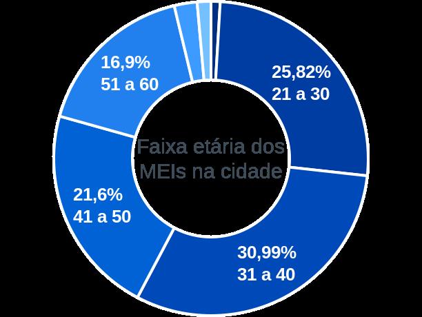 Faixa etária de MEIs na cidade de Salgado de São Félix