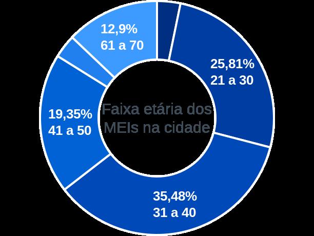 Faixa etária de MEIs na cidade de São João do Tigre