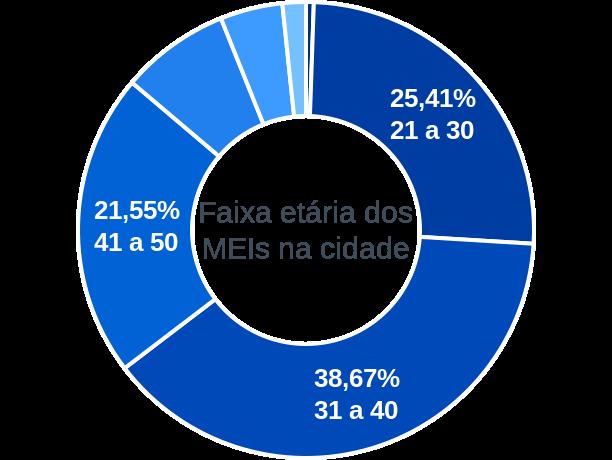 Faixa etária de MEIs na cidade de Lagoa dos Gatos