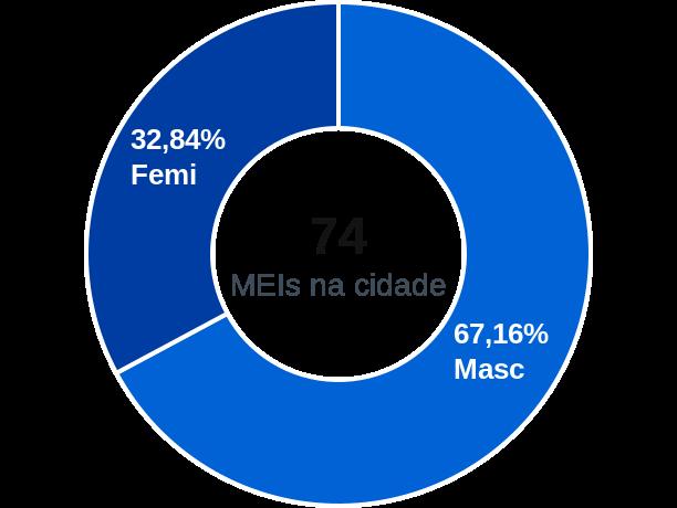 Gênero de MEIs na cidade de Palmeirina