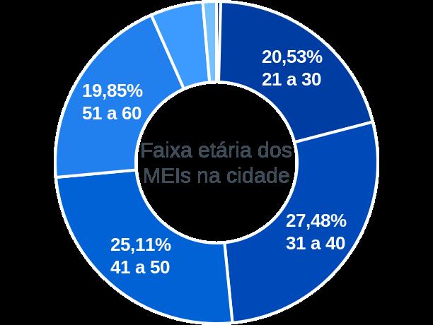 Faixa etária de MEIs na cidade de Ribeirão
