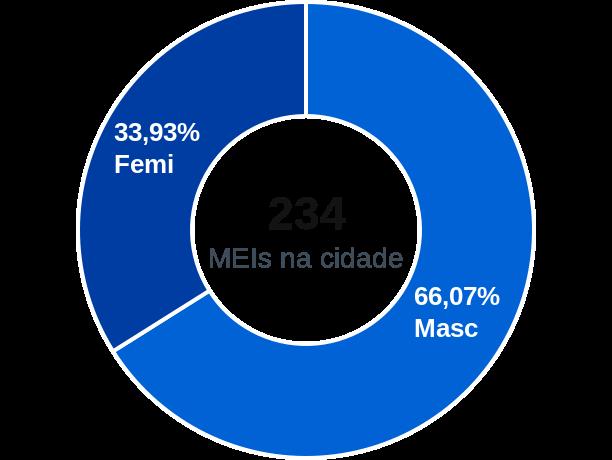 Gênero de MEIs na cidade de São Joaquim do Monte
