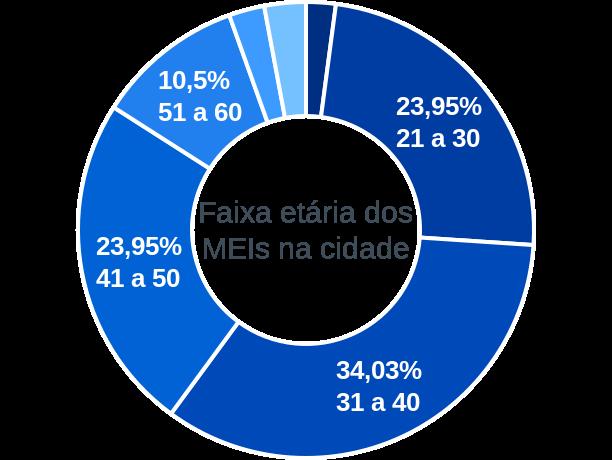 Faixa etária de MEIs na cidade de São Joaquim do Monte