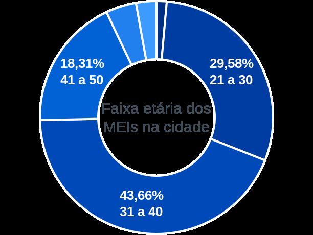 Faixa etária de MEIs na cidade de Alegrete do Piauí