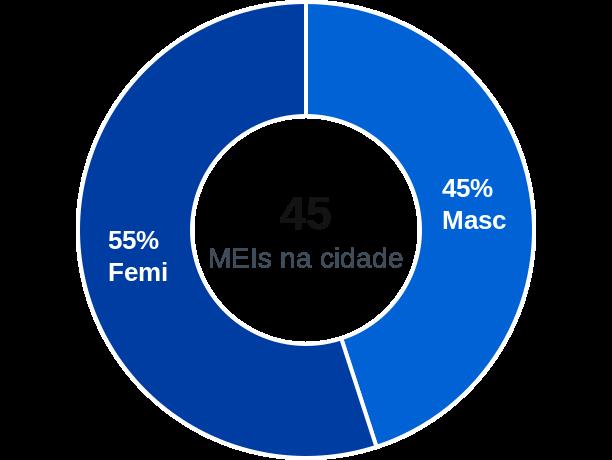 Gênero de MEIs na cidade de Bonfim do Piauí