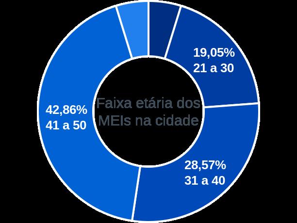 Faixa etária de MEIs na cidade de Brejo do Piauí