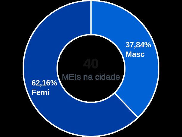 Gênero de MEIs na cidade de Caldeirão Grande do Piauí