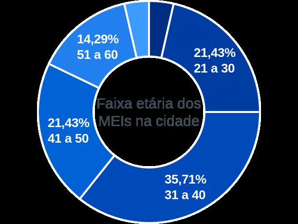 Faixa etária de MEIs na cidade de Capitão Gervásio Oliveira
