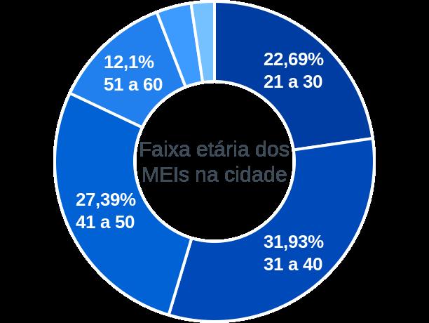 Faixa etária de MEIs na cidade de Castelo do Piauí