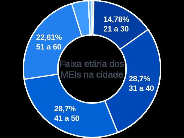 Faixa etária de MEIs na cidade de Elesbão Veloso
