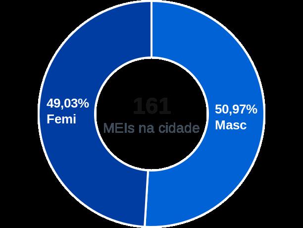 Gênero de MEIs na cidade de Ipiranga do Piauí