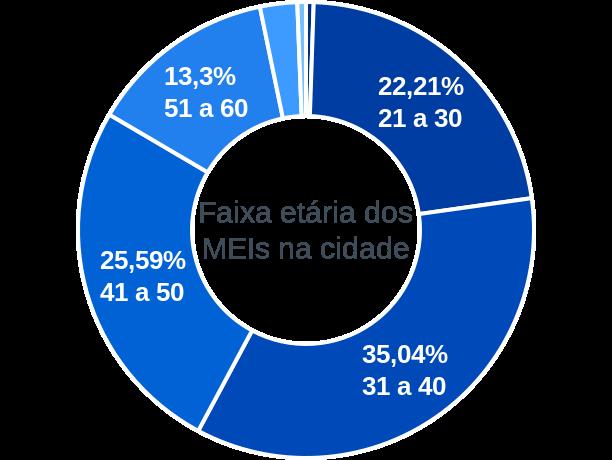Faixa etária de MEIs na cidade de José de Freitas