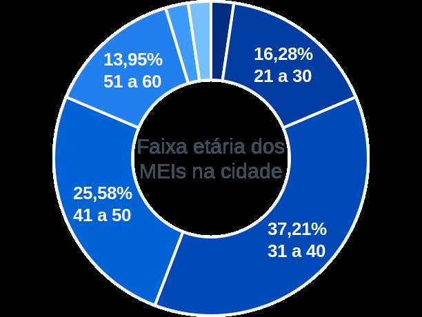 Faixa etária de MEIs na cidade de Júlio Borges