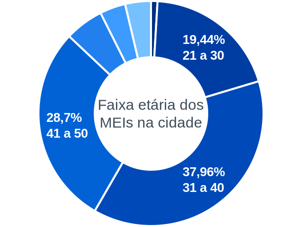 Faixa etária de MEIs na cidade de Lagoa Alegre