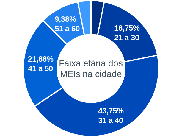 Faixa etária de MEIs na cidade de Morro do Chapéu do Piauí